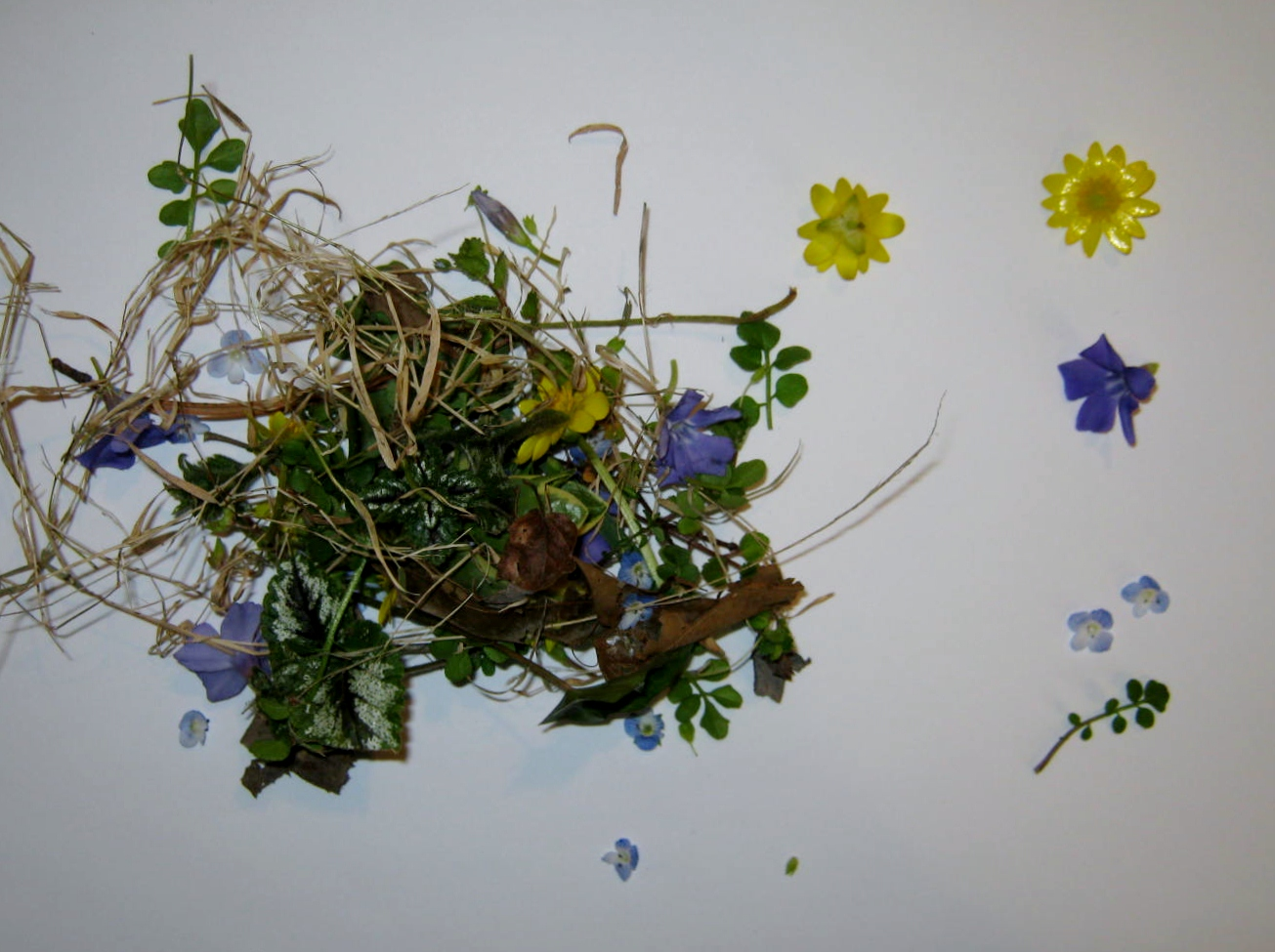Pressed Flowers – Pressing With Heated Books – MINDING MY P S WITH Q