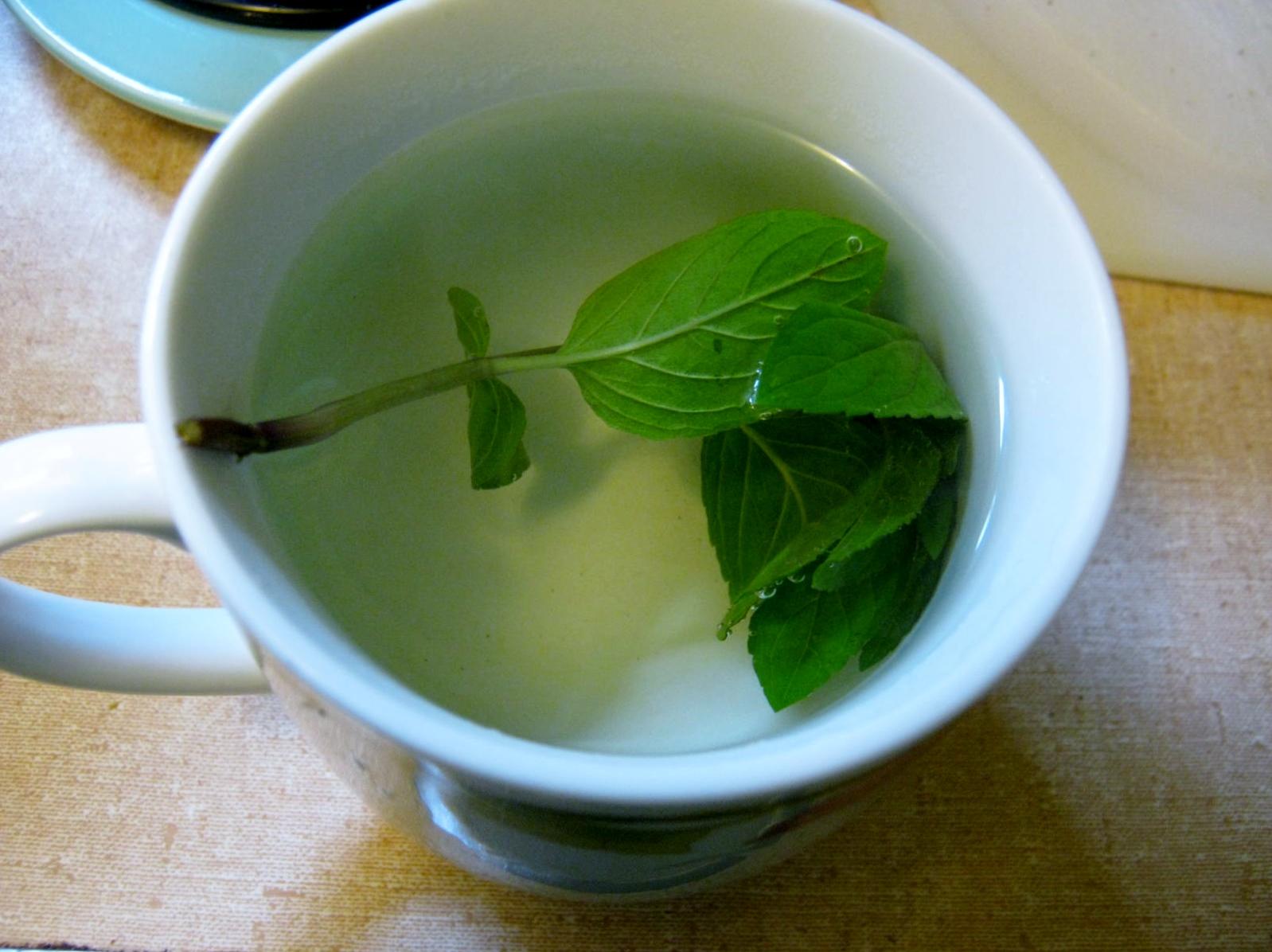 Spearamint tea