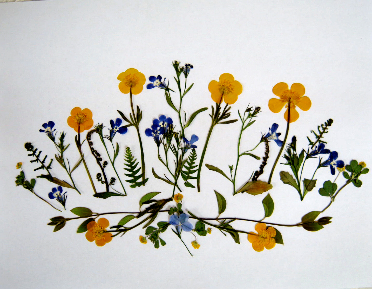 Once your first coat of resin has dried, examine your case to make sure all  the flowers have been properly coated. If needed, add a second coat of  resin.