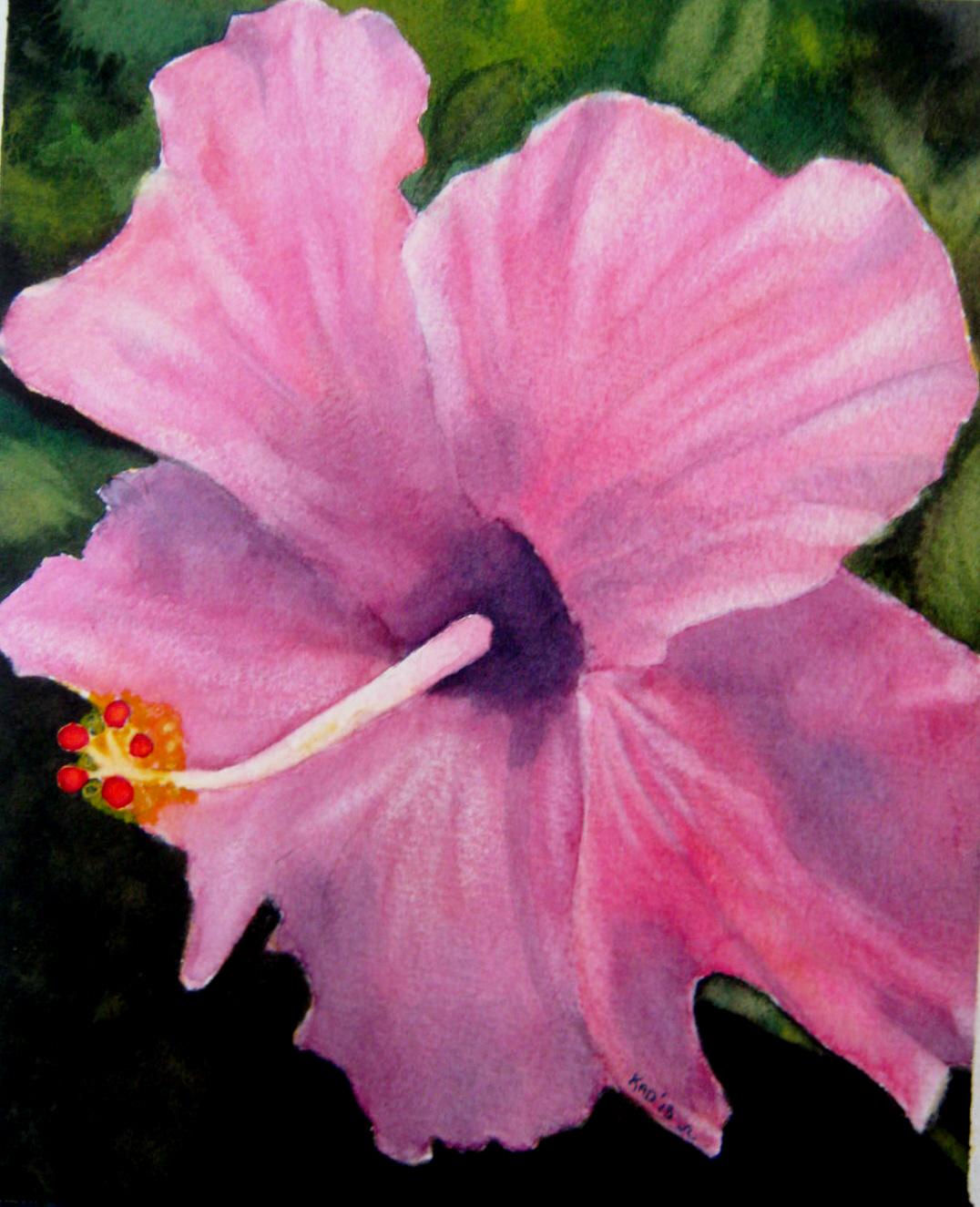 Painting – Hibiscus WetCanvas February Challenge