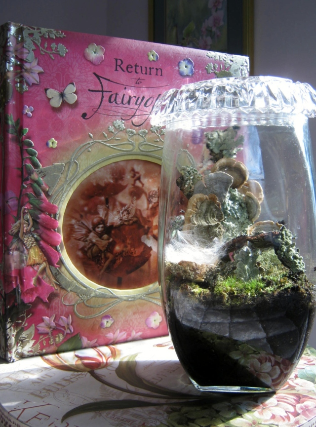Terrarium with crystal lid
