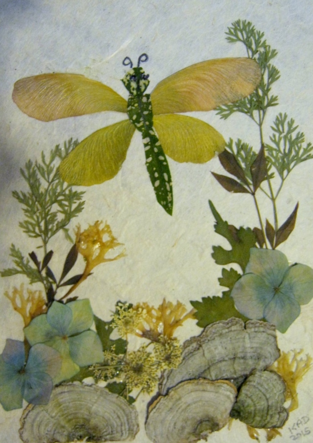 The Dragonfly: Pressed Flower Artwork, 5 x 7, Blue Hydrangeas, Queen Anne's Lace, Seaweed, Lichen, Mulberry Leaves