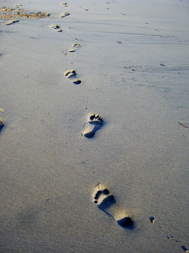 Footprints on Treasure Beach, Jamaica