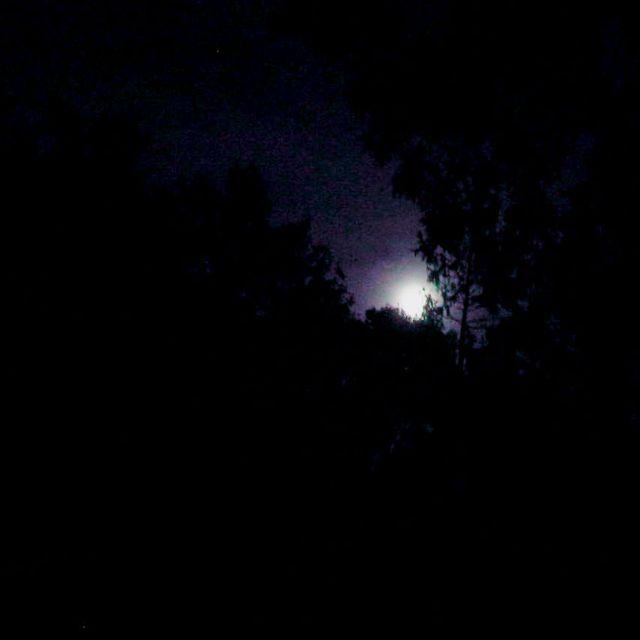 the shadowed moon