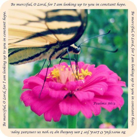 Be Merciful jpg