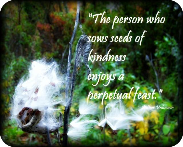 milkweed quote