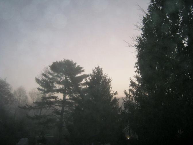 Photograph – Foggy Enchanted Trio