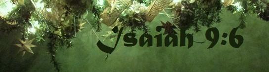 Christmas Tree Blog (2)