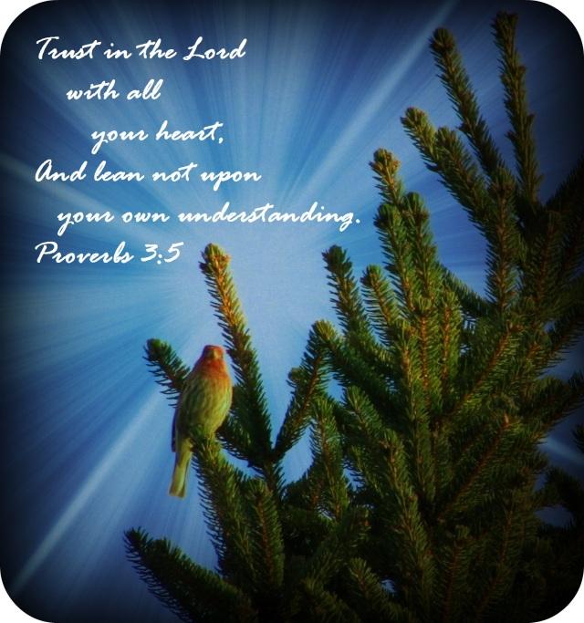 Proverbs 3 - Copy