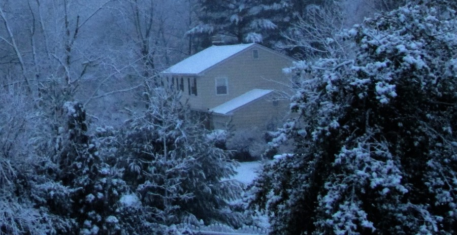 snow 7 (2)