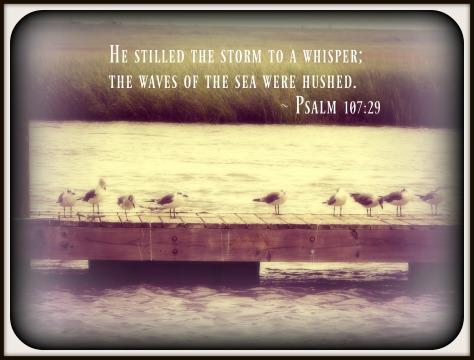 psalm 10729