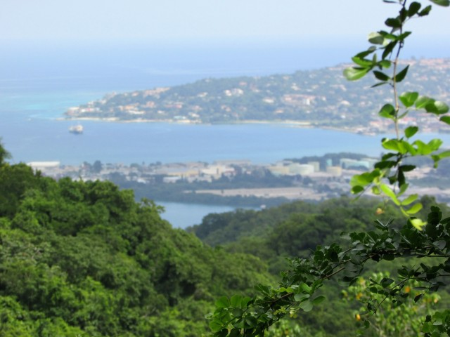 The view of Montego Bay, Jamaica from Rocklands Bird Sanctuary