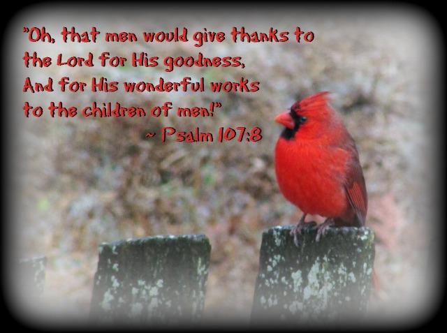 psalm-1078