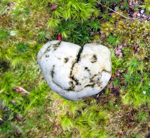 mossy-stone